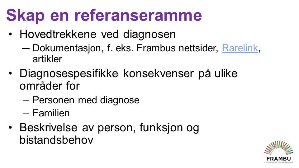 Skap en referanseramme Hovedtrekkene ved diagnosen — Dokumentasjon, f.