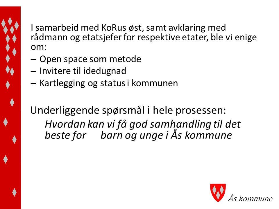 Ås kommune Første dag: - Presentasjon av deltagerne - Idedugnad som resulterte i - innsatsområder som i prioritert rekkefølge er:
