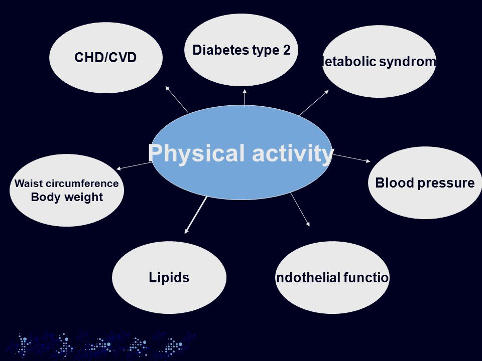 Physical activity CHD/CVD Waist circumference Body weight LipidsEndothelial function Blood pressure Metabolic syndrome Diabetes type 2