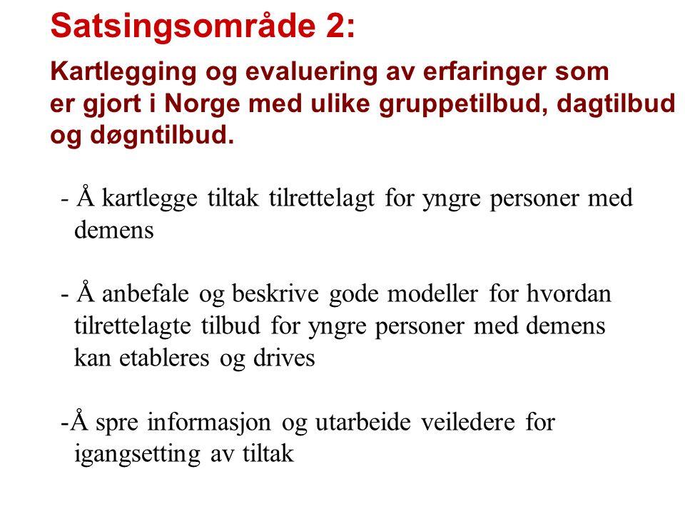 Satsingsområde 2: Kartlegging og evaluering av erfaringer som er gjort i Norge med ulike gruppetilbud, dagtilbud og døgntilbud. - Å kartlegge tiltak t
