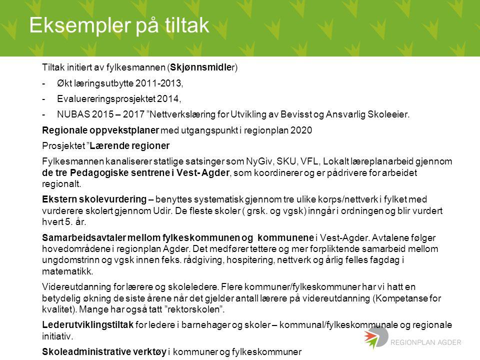 """Eksempler på tiltak Tiltak initiert av fylkesmannen (Skjønnsmidler) -Økt læringsutbytte 2011-2013, -Evaluereringsprosjektet 2014, -NUBAS 2015 – 2017 """""""