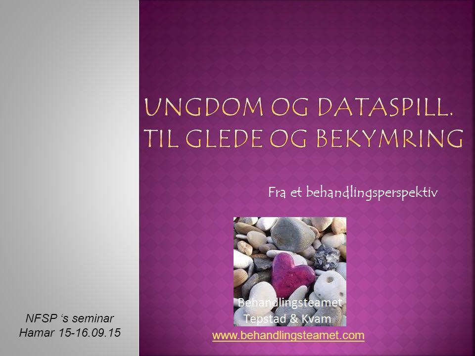 NFSP 's seminar Hamar 15-16.09.15 Fra et behandlingsperspektiv www.behandlingsteamet.com
