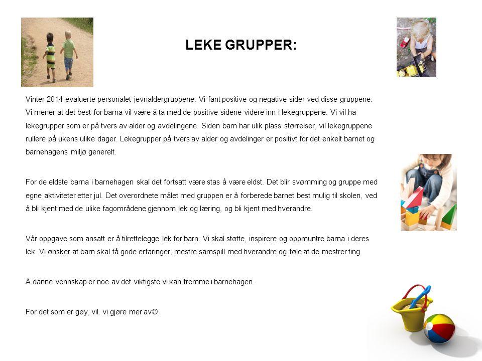 LEKE GRUPPER: Vinter 2014 evaluerte personalet jevnaldergruppene. Vi fant positive og negative sider ved disse gruppene. Vi mener at det best for barn