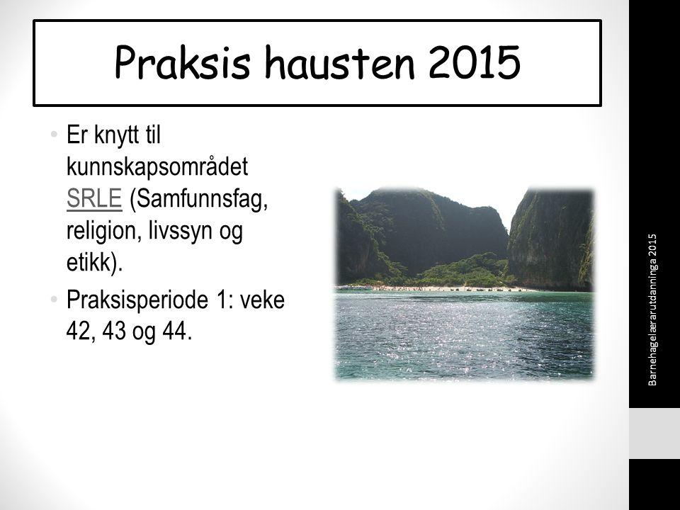 Praksis hausten 2015 Er knytt til kunnskapsområdet SRLE (Samfunnsfag, religion, livssyn og etikk).