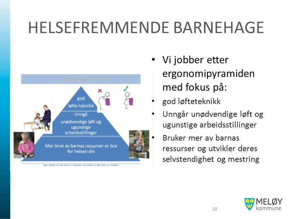 HELSEFREMMENDE BARNEHAGE Vi jobber etter ergonomipyramiden med fokus på: god løfteteknikk Unngår unødvendige løft og ugunstige arbeidsstillinger Bruker mer av barnas ressurser og utvikler deres selvstendighet og mestring 18