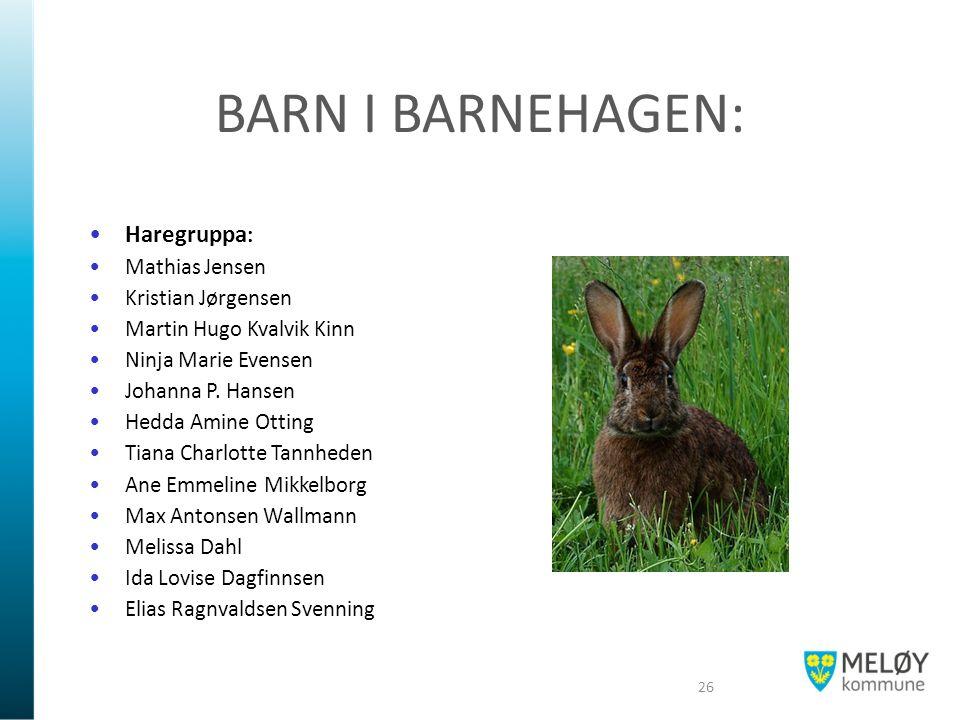BARN I BARNEHAGEN: Haregruppa : Mathias Jensen Kristian Jørgensen Martin Hugo Kvalvik Kinn Ninja Marie Evensen Johanna P. Hansen Hedda Amine Otting Ti
