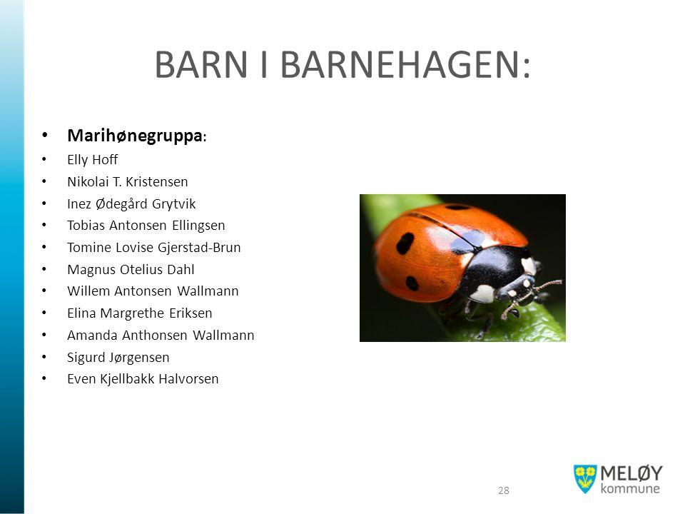 BARN I BARNEHAGEN: Marihønegruppa : Elly Hoff Nikolai T.