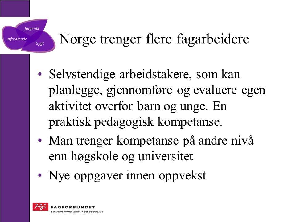 Norge trenger flere fagarbeidere Selvstendige arbeidstakere, som kan planlegge, gjennomføre og evaluere egen aktivitet overfor barn og unge. En prakti