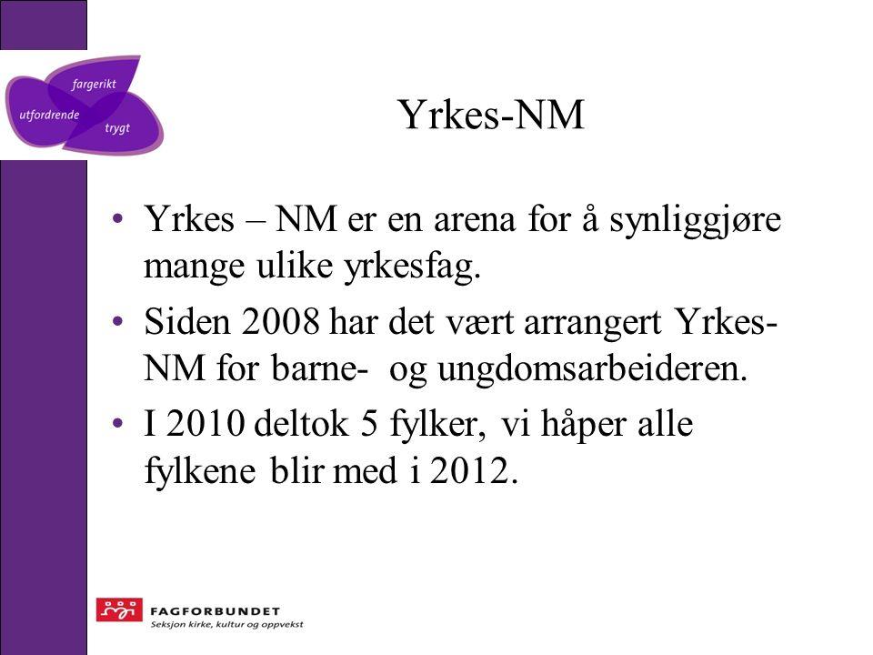 Yrkes-NM Yrkes – NM er en arena for å synliggjøre mange ulike yrkesfag. Siden 2008 har det vært arrangert Yrkes- NM for barne- og ungdomsarbeideren. I