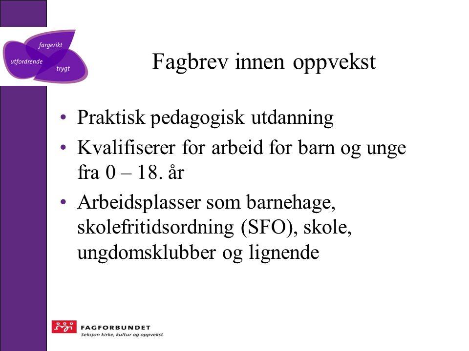 Fagbrev innen oppvekst Praktisk pedagogisk utdanning Kvalifiserer for arbeid for barn og unge fra 0 – 18.