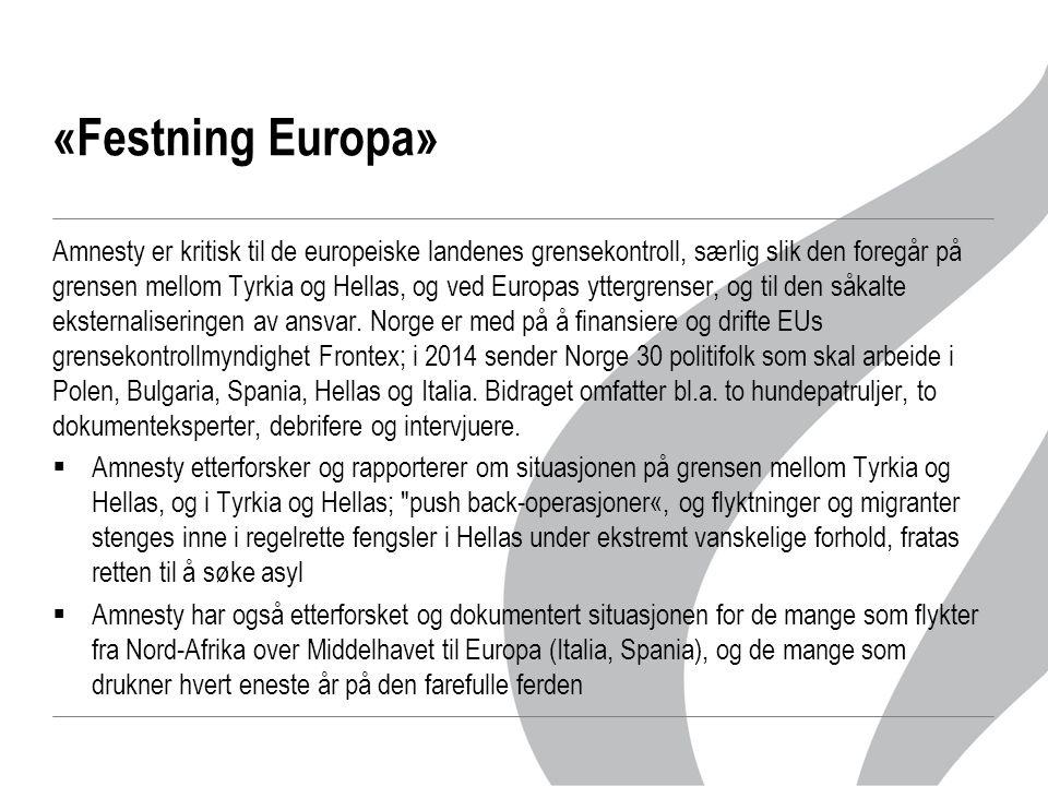 «Festning Europa» Amnesty er kritisk til de europeiske landenes grensekontroll, særlig slik den foregår på grensen mellom Tyrkia og Hellas, og ved Europas yttergrenser, og til den såkalte eksternaliseringen av ansvar.