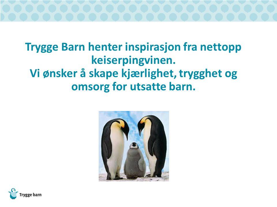 Trygge Barn henter inspirasjon fra nettopp keiserpingvinen. Vi ønsker å skape kjærlighet, trygghet og omsorg for utsatte barn.