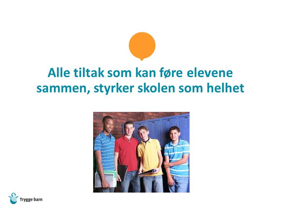Alle tiltak som kan føre elevene sammen, styrker skolen som helhet