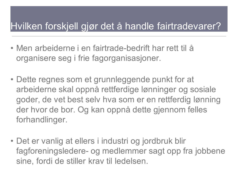 Hvilken forskjell gjør det å handle fairtradevarer? Men arbeiderne i en fairtrade-bedrift har rett til å organisere seg i frie fagorganisasjoner. Dett