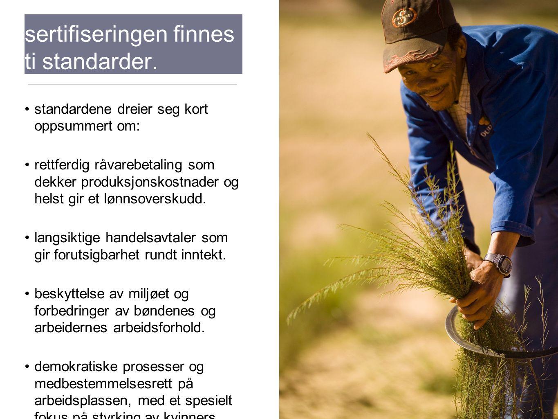 Bak fairtrade- sertifiseringen finnes ti standarder. standardene dreier seg kort oppsummert om: rettferdig råvarebetaling som dekker produksjonskostna