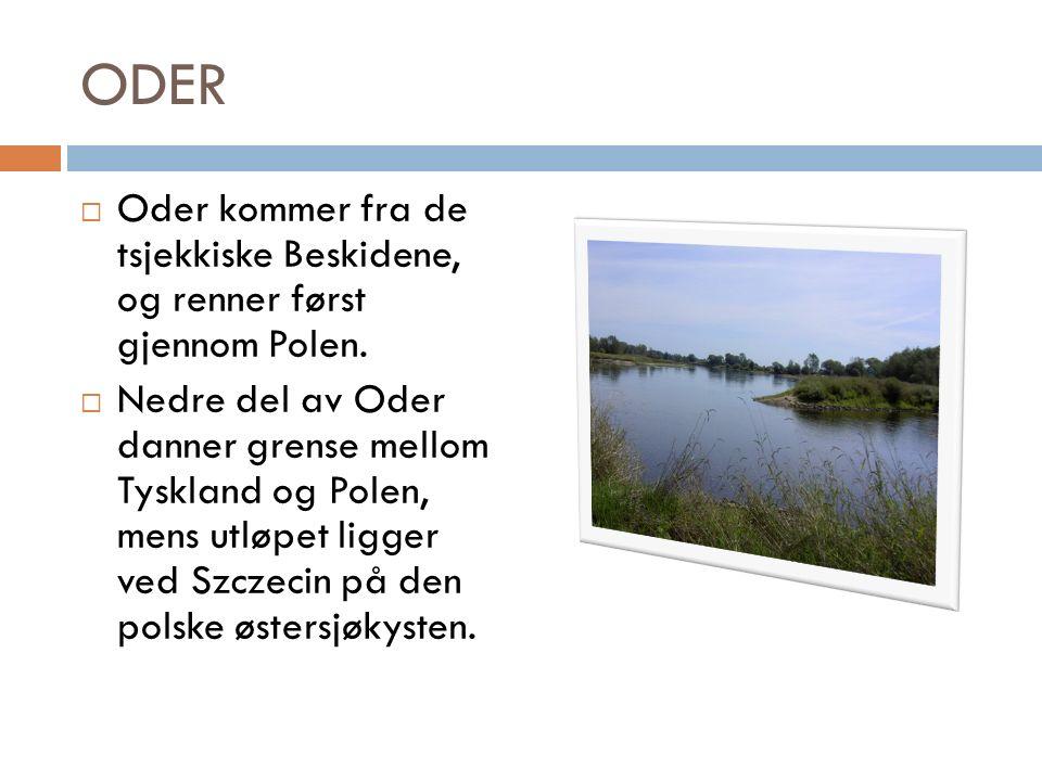 ODER  Oder kommer fra de tsjekkiske Beskidene, og renner først gjennom Polen.