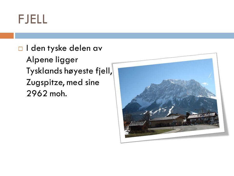 FJELL  I den tyske delen av Alpene ligger Tysklands høyeste fjell, Zugspitze, med sine 2962 moh.