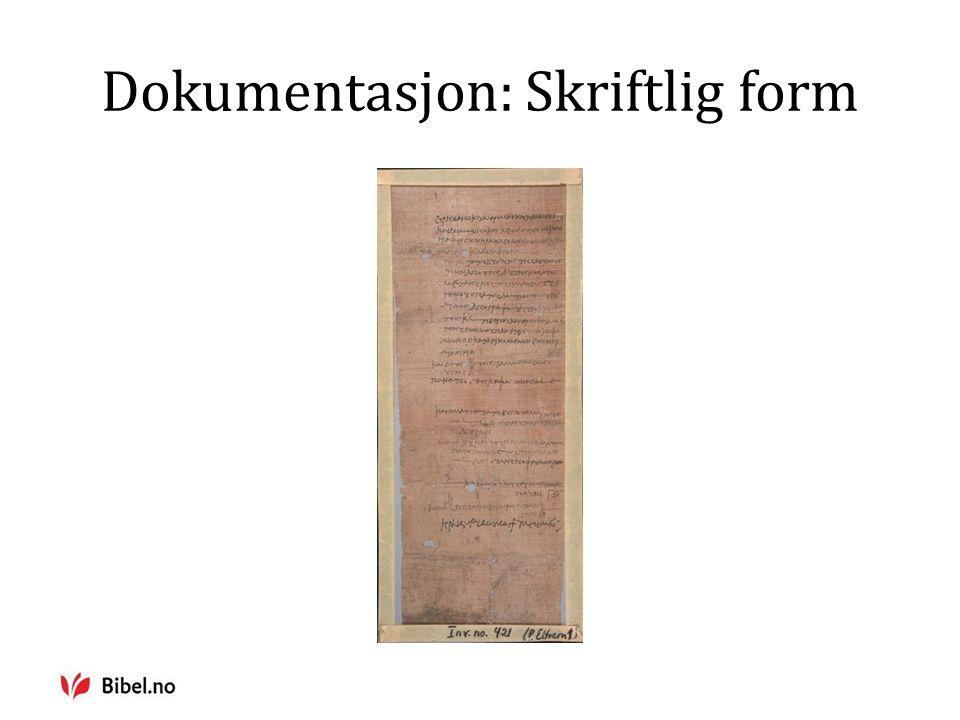 Dokumentasjon: Skriftlig form