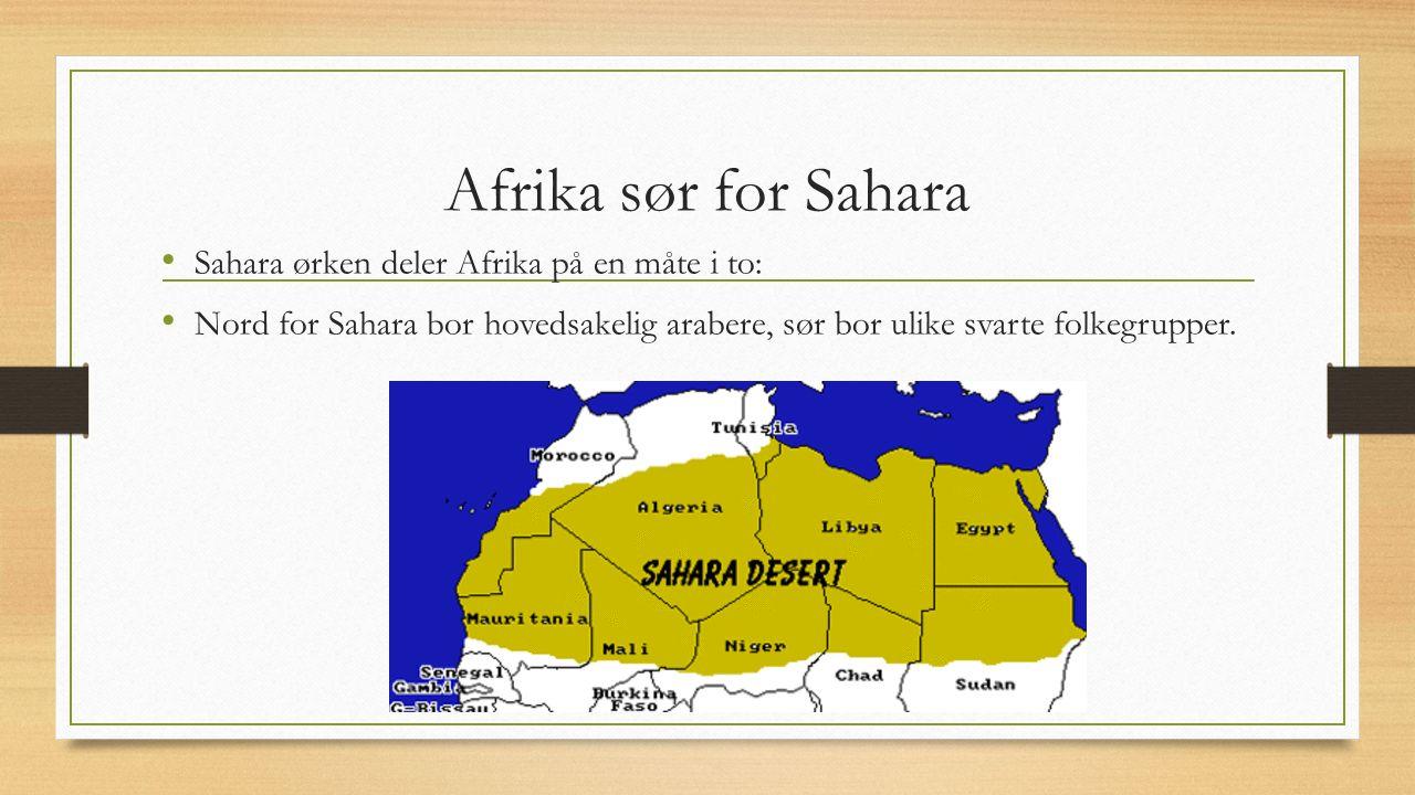 Afrika sør for Sahara Sahara ørken deler Afrika på en måte i to: Nord for Sahara bor hovedsakelig arabere, sør bor ulike svarte folkegrupper.