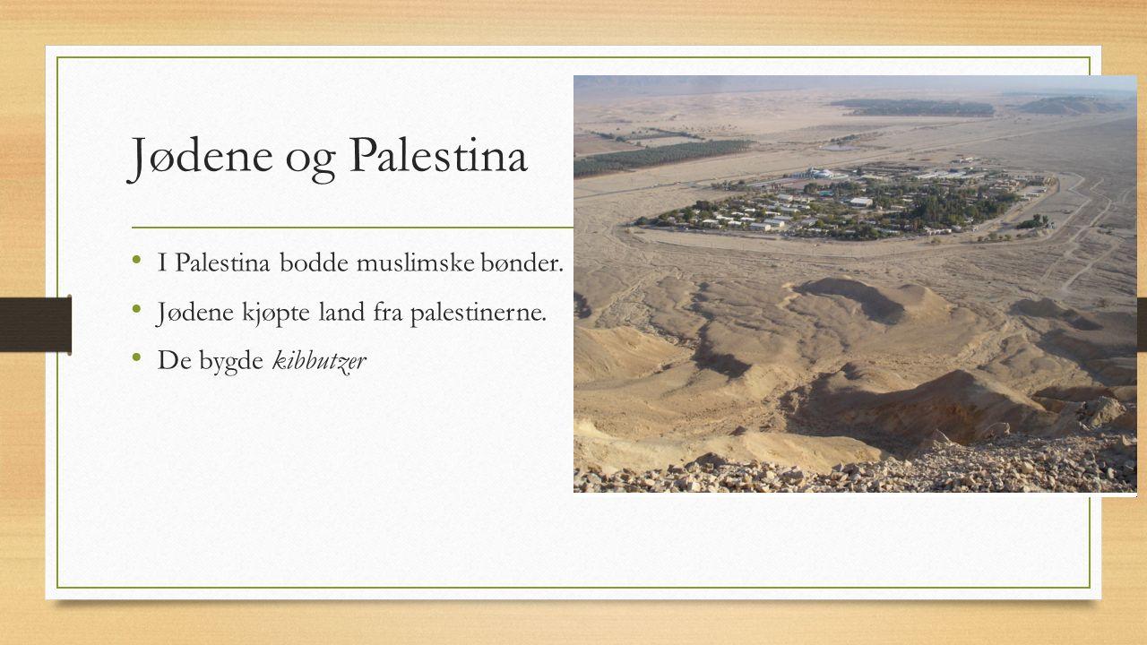 Britene og jødene Britene trengte mest mulig støtte, både av arabere og jøder, under VK1 Britene lovde jødene et hjemland i Palestina De hadde også lovet araberne selvstendighet Jøder og palestiner hadde levd fredelig siden 1800-tallet Nå ble det konflikt mellom folkegruppene