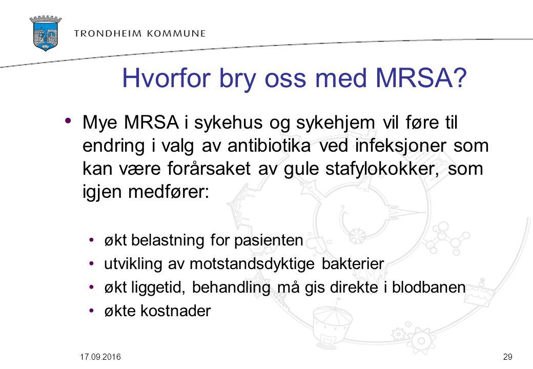 Hvorfor bry oss med MRSA? Mye MRSA i sykehus og sykehjem vil føre til endring i valg av antibiotika ved infeksjoner som kan være forårsaket av gule st