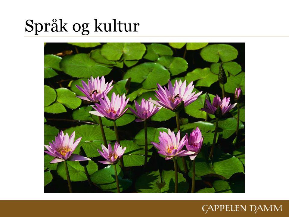 Typiske trekk ved norsk SVO-språk: Norsk er et ordstillingsspråk og et SVO-språk.