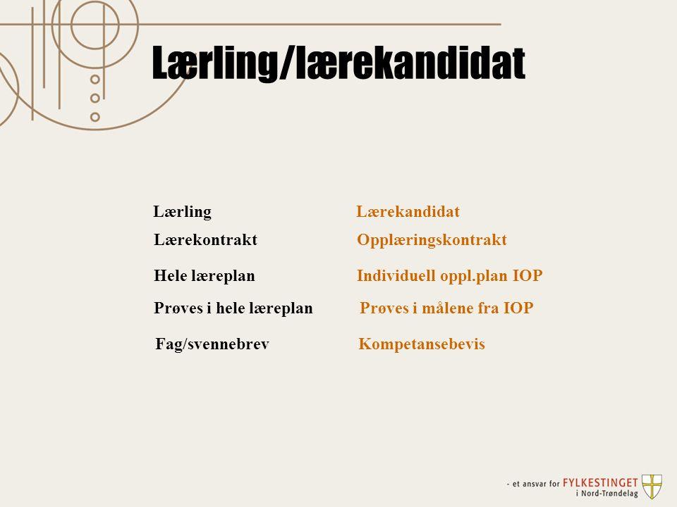Lærling/lærekandidat Lærling Lærekandidat LærekontraktOpplæringskontrakt Hele læreplan Individuell oppl.plan IOP Prøves i hele læreplan Prøves i målene fra IOP Fag/svennebrevKompetansebevis