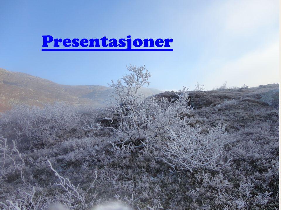Presentasjoner