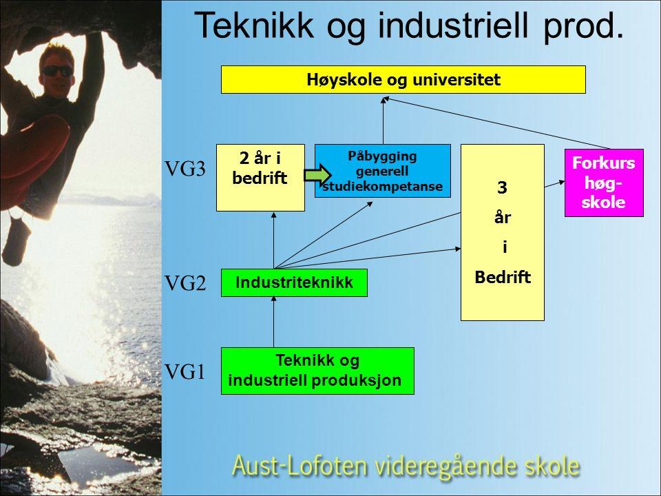 Teknikk og industriell produksjon VG1 VG2 VG3 Industriteknikk Høyskole og universitet Teknikk og industriell prod.