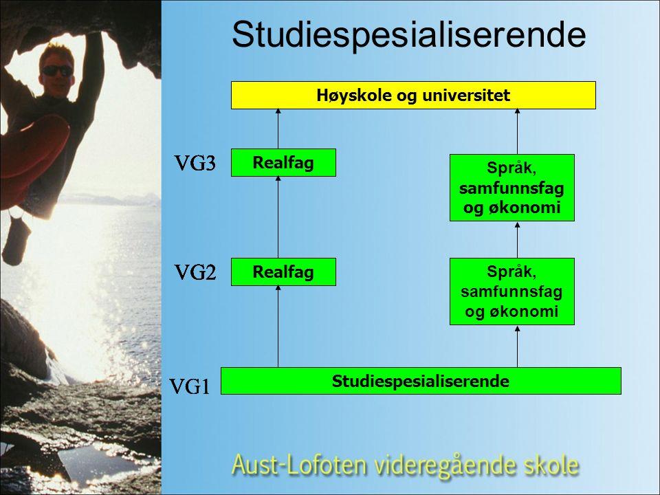 Studiespesialiserende Høyskole og universitet VG1 VG2 VG3 Studiespesialiserende Realfag Språk, samfunnsfag og økonomi Realfag Språk, samfunnsfag og økonomi VG2 VG3 VG1 VG2 VG3 VG2 VG3 VG2 VG3 VG1 VG2 VG3