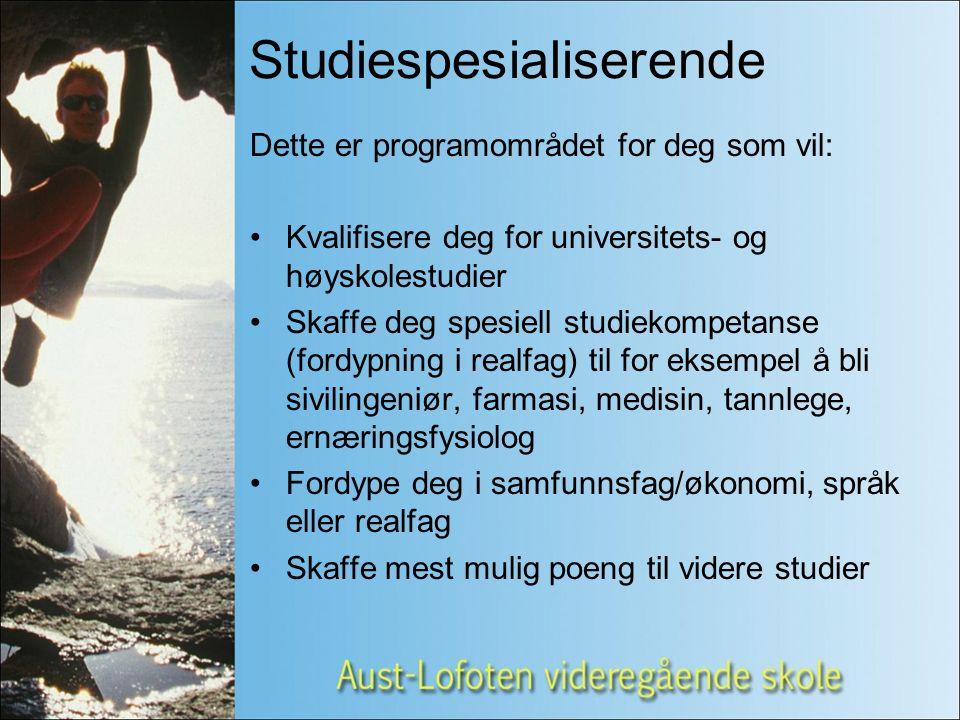Utdanningsveier etter VG1 Design og håndverk Båtbyggerfaget