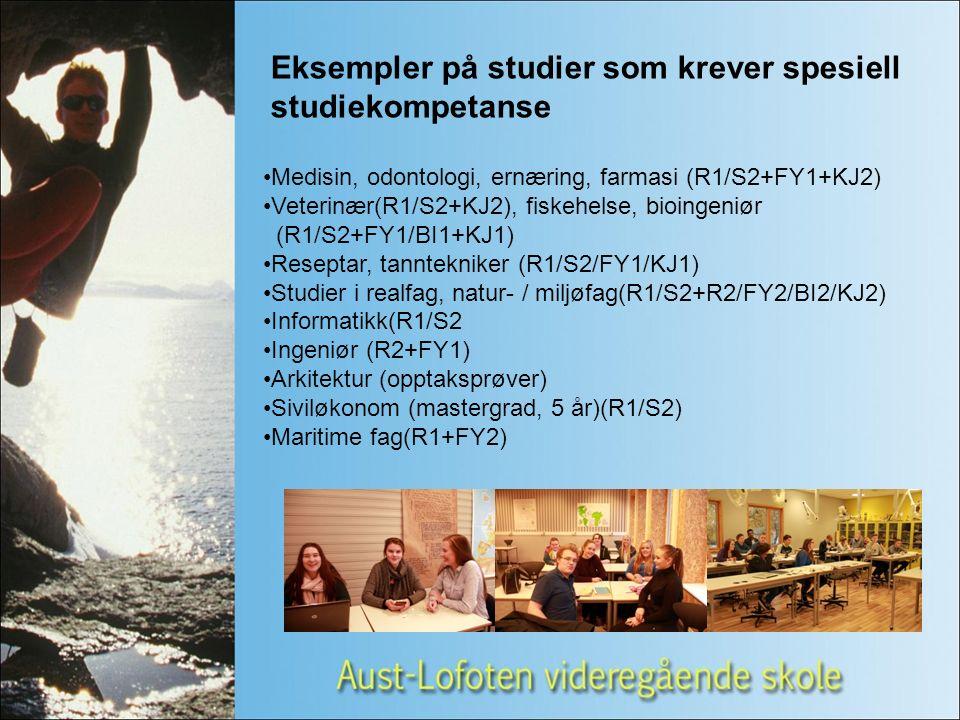 Utdanningsveier etter VG1 Design og håndverk Design og trearbeid