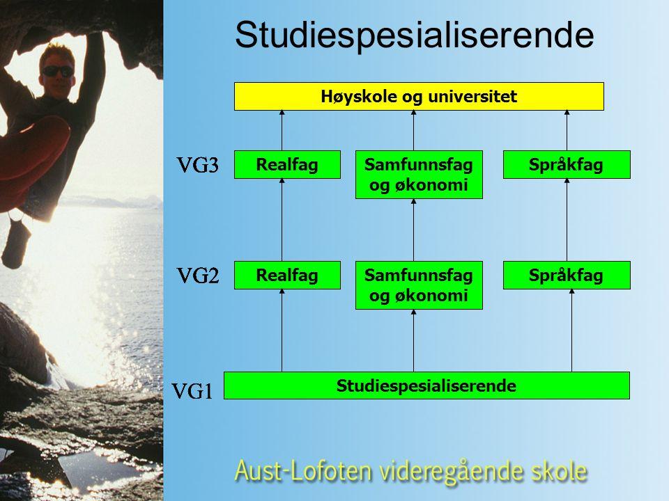 Studiespesialiserende Høyskole og universitet VG1 VG2 VG3 Studiespesialiserende SpråkfagRealfagSamfunnsfag og økonomi SpråkfagRealfagSamfunnsfag og økonomi VG2 VG3 VG1 VG2 VG3 VG2 VG3 VG2 VG3 VG1 VG2 VG3