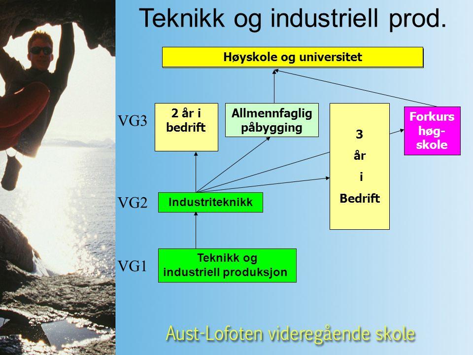 Teknikk og industriell produksjon VG1 VG2 VG3 Høyskole og universitet Industriteknikk Høyskole og universitet Teknikk og industriell prod.