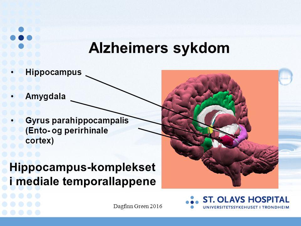 Dagfinn Green 2016 Alzheimers sykdom Hippocampus Amygdala Gyrus parahippocampalis (Ento- og perirhinale cortex) Hippocampus-komplekset i mediale tempo