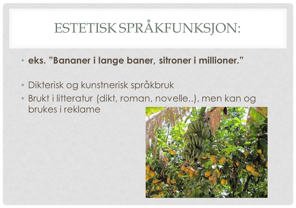 """ESTETISK SPRÅKFUNKSJON: eks. """"Bananer i lange baner, sitroner i millioner."""" Dikterisk og kunstnerisk språkbruk Brukt i litteratur (dikt, roman, novell"""