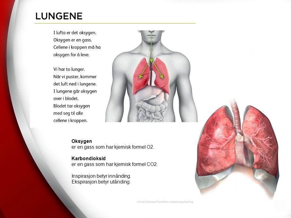 ninajohansenforskienvoksenopplæring Oksygen er en gass som har kjemisk formel O2.