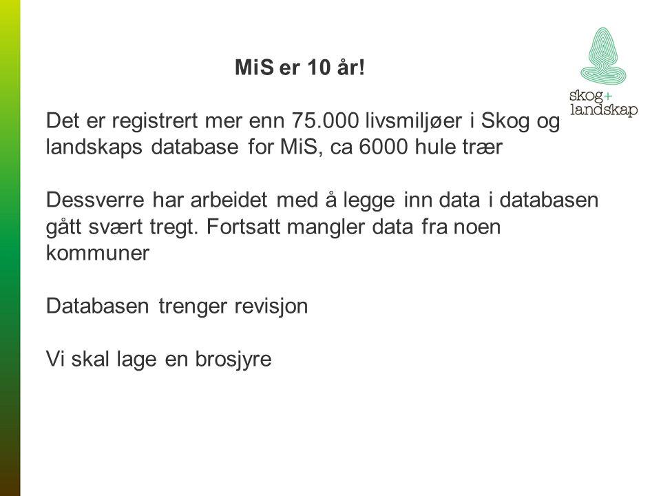 Status for miljøregistrering - skogbruksplanlegging 36 mill.