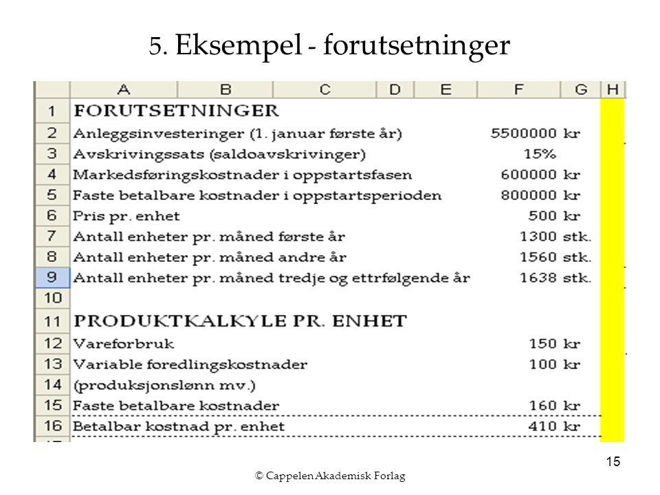 © Cappelen Akademisk Forlag 15 5. Eksempel - forutsetninger