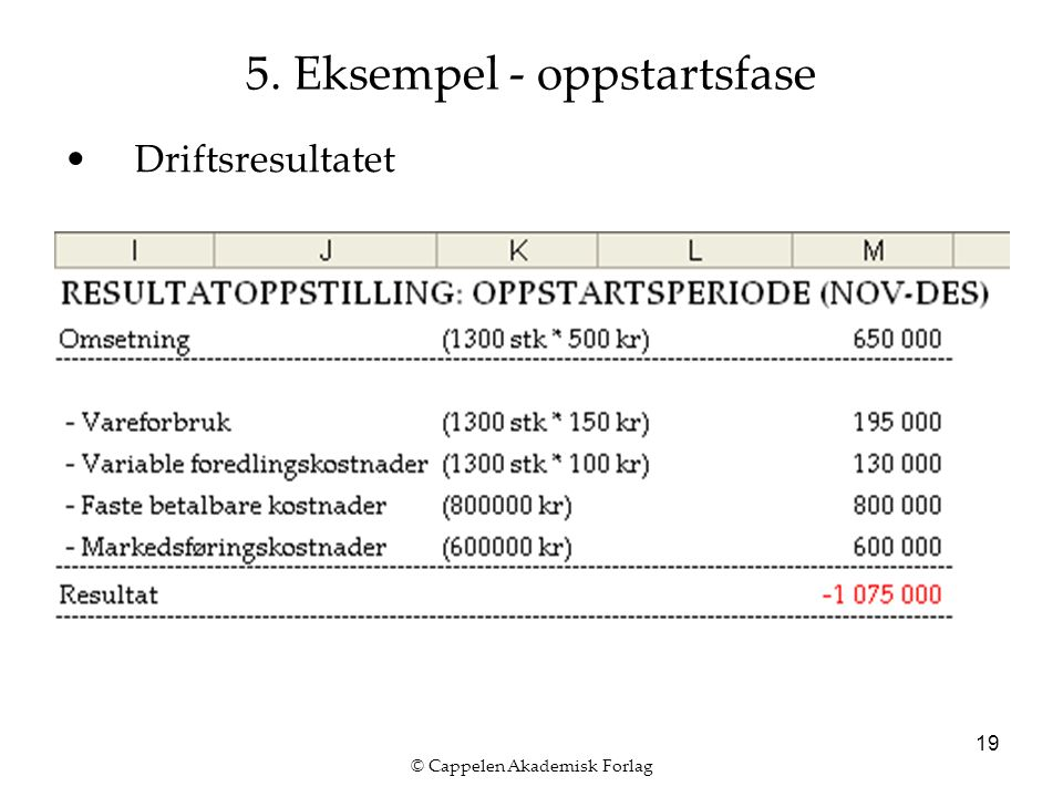 © Cappelen Akademisk Forlag 19 5. Eksempel - oppstartsfase Driftsresultatet