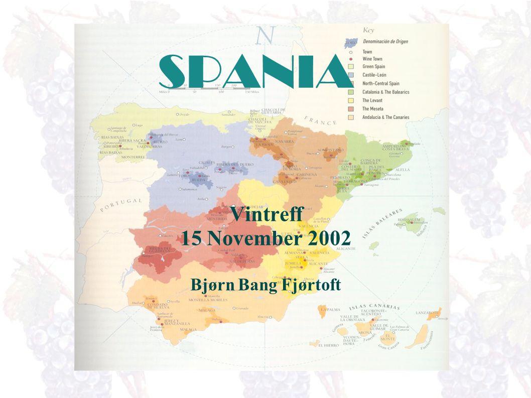 SPANIA Vintreff 15 November 2002 Bjørn Bang Fjørtoft
