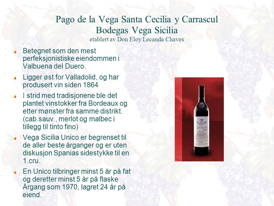 Ribera del Duero Vinmarkenes karakter varierer betraktelig.