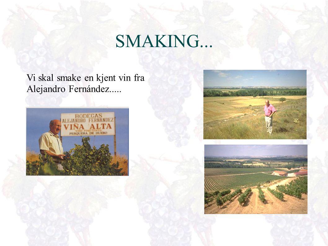 Pilgrimsruten el Camino de Santiago Mer enn 740 km av pilgrimsruten ligger på Spansk område, og nesten en fjerdedel av den går gjennom Navarra.