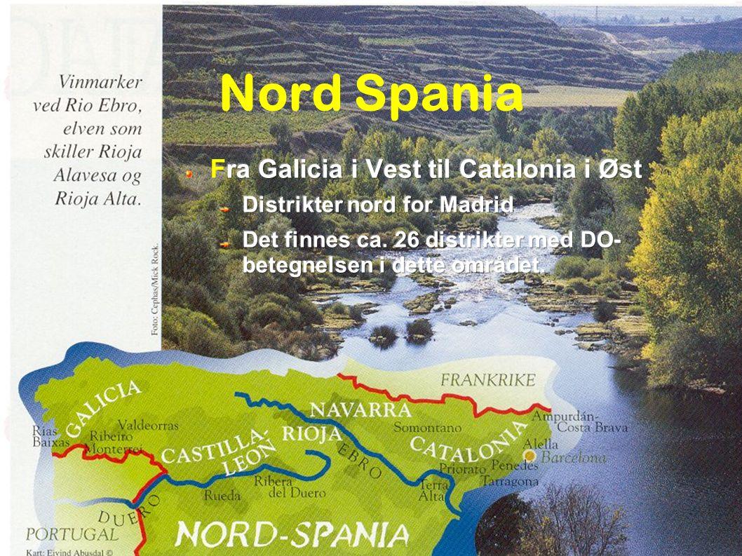 Klassifikasjon av Spansk vin BORDVINER: Vino de Mesa (VdM) Har ikke noe regionalt navn eller årgang Vino Comarcal (VC eller CV) Regional vin: viner med rett til geografisk navn (vin de pays de region/departement) Vino de la Tierra (VdlT) Landvin, (Vin de pays de zone) KVALITETSVIN Hver vinproduserende sone har et Consejo Regulator, kontrollorgan, lager regler...