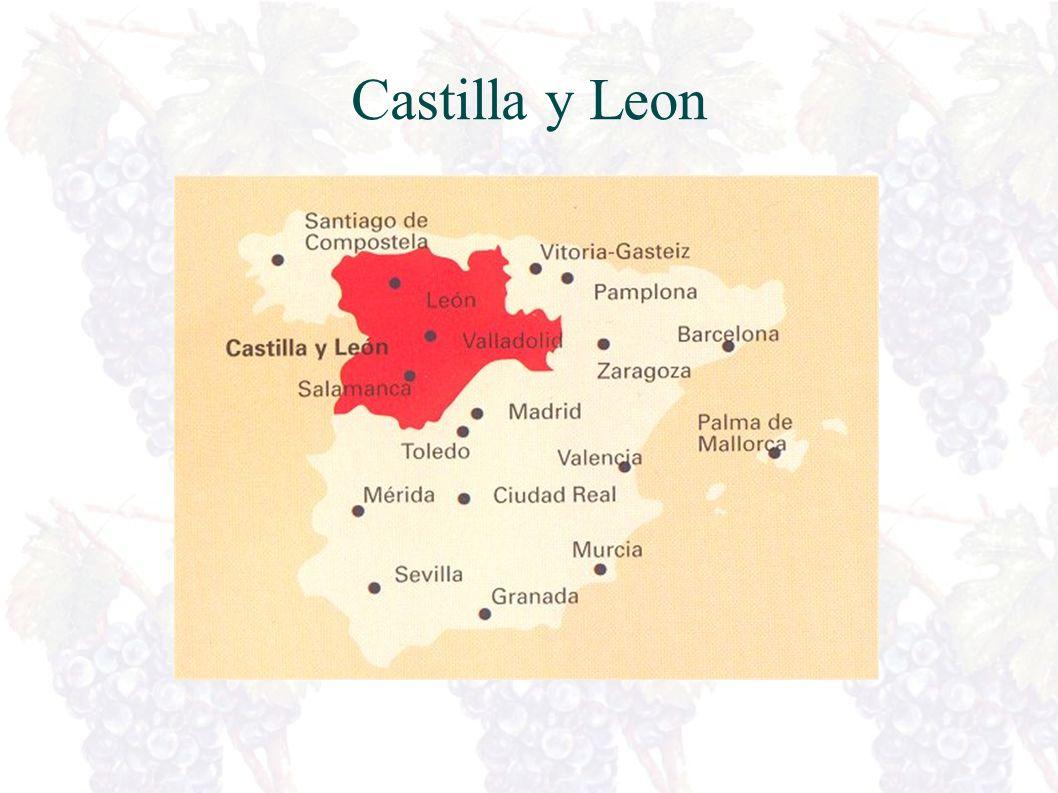 Vinlandet Spania Nord for Madrid Stikkord – Nord Spania Rioja, Navarra ++ Beste svakviner Fatlagrede rødvinerNord-Vest Galicia Rias Baixas, Ribeiro+ Elegante hvitviner.