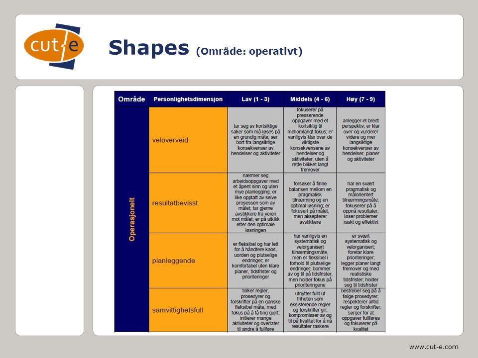 www.cut-e.com Shapes (Område: operativt)