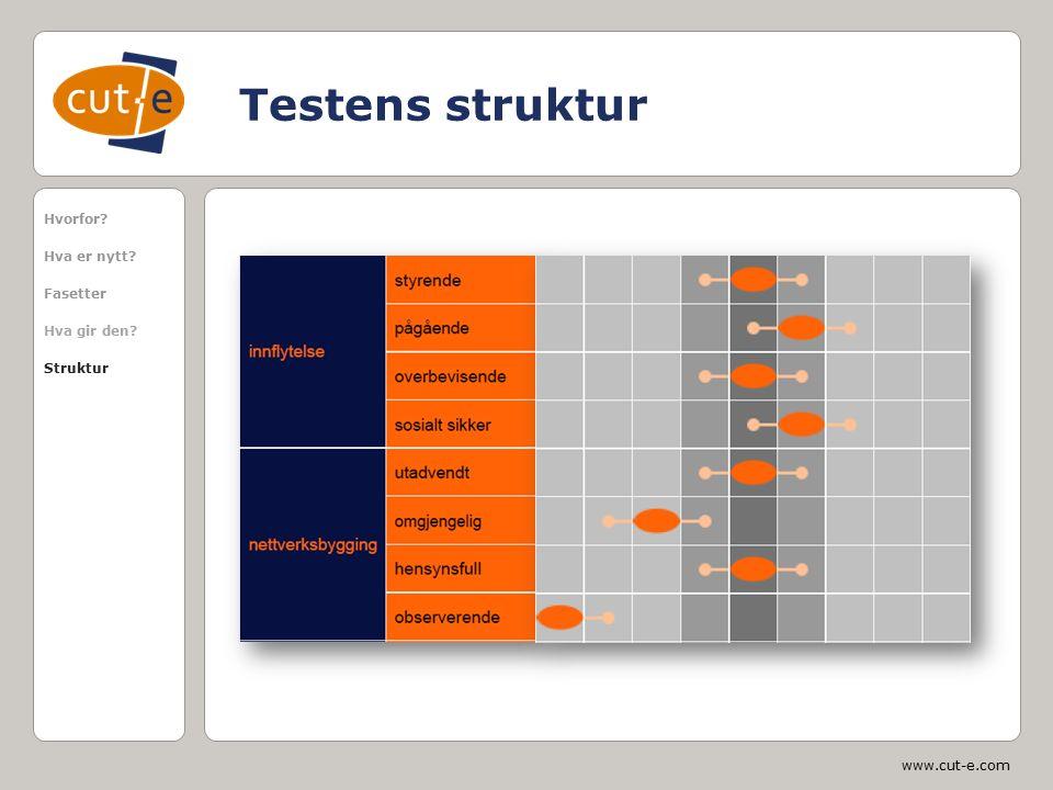 www.cut-e.com Testens struktur Hvorfor? Hva er nytt? Fasetter Hva gir den? Struktur
