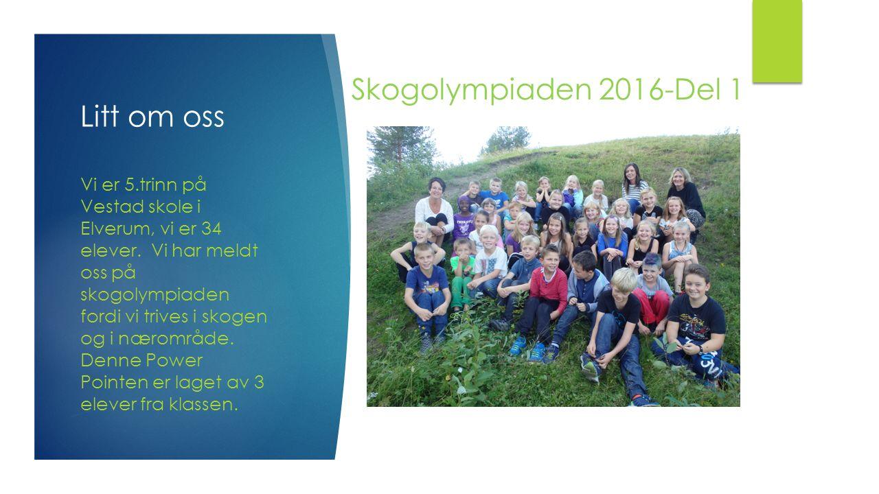 Skogolympiaden 2016-Del 1 Litt om oss Vi er 5.trinn på Vestad skole i Elverum, vi er 34 elever. Vi har meldt oss på skogolympiaden fordi vi trives i s