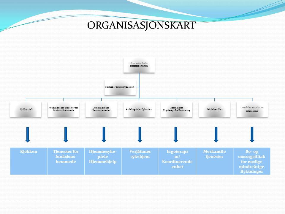 ORGANISASJONSKART Oktober 2011 Virksomhetsleder omsorgstjenesten Kjøkkensjef Avdelingsleder Tjenester for funksjonshemmede Avdelingsleder Hjemmetjenes