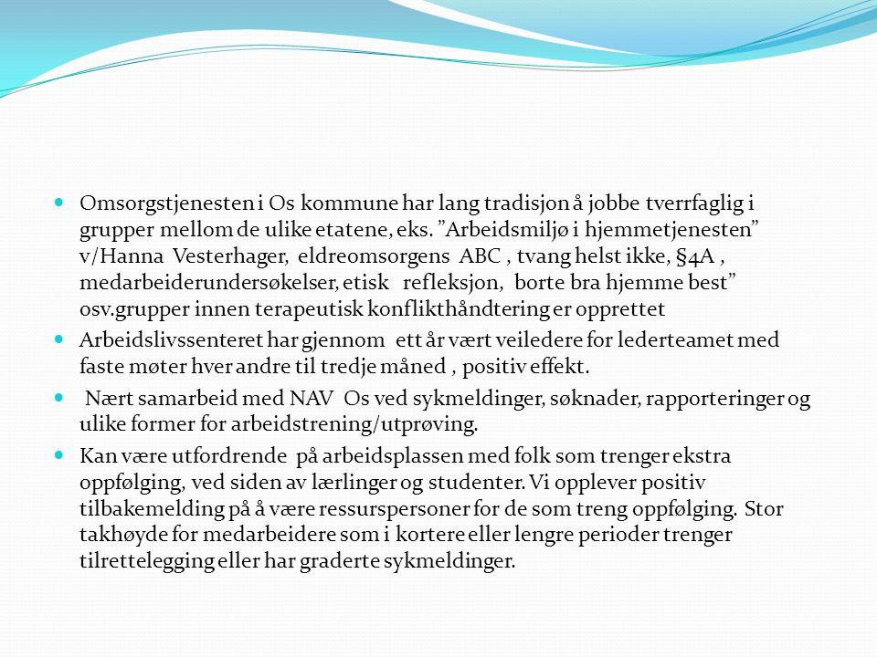 """Omsorgstjenesten i Os kommune har lang tradisjon å jobbe tverrfaglig i grupper mellom de ulike etatene, eks. """"Arbeidsmiljø i hjemmetjenesten"""" v/Hanna"""